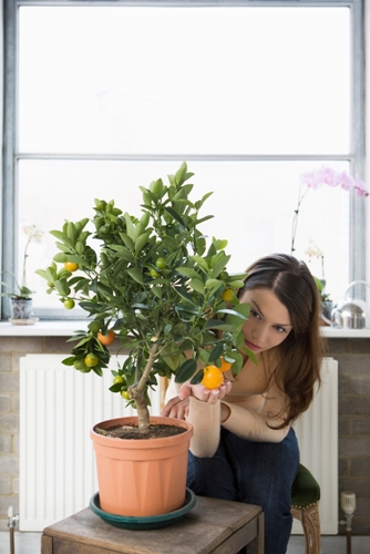 Six Ways to Improve the Air Quality in Your Home