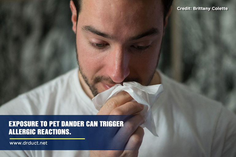 Exposure to pet dander can trigger allergic reactions