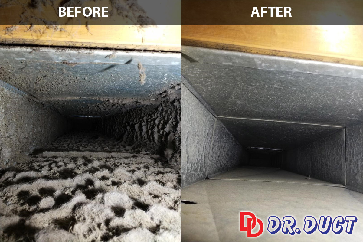 Duct Cleaning Before & After
